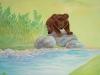 Медведь у воды